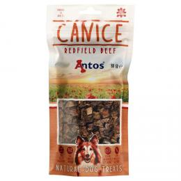 Antos CANICE beef 80g